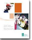 Rapport du registre ontarien des traumatismes : Blessures graves en Ontario, 2008-2009